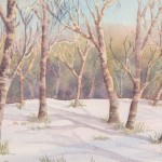 Silver Birches in Snow (Watercolour)