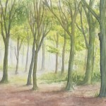 Spring Woodland (Watercolour)`Spring Woodland (Watercolour)