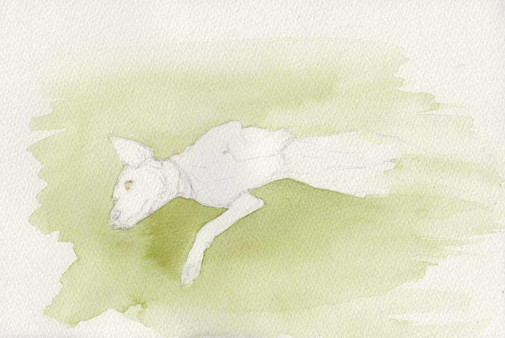 Clancy - Goofing Around (Watercolour)