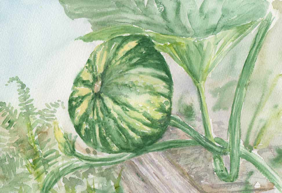 Pumpkin Patch (Watercolour)