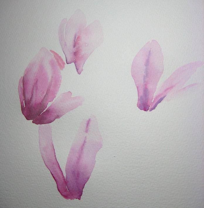 Magnificent Magnolia (Watercolour detail)