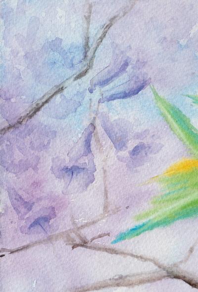 jacaranda detail No. 2 (Watercolour)