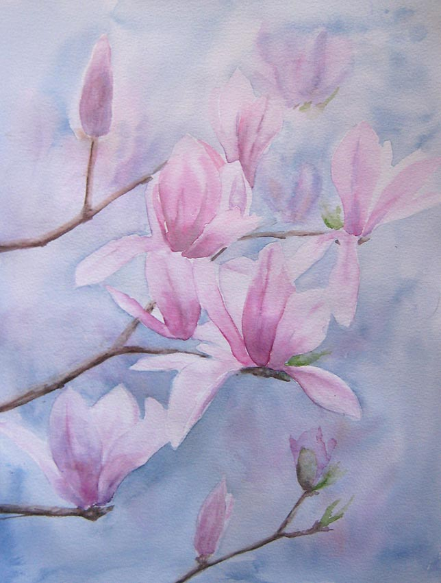 Magnificent Magnolia (Watercolour)