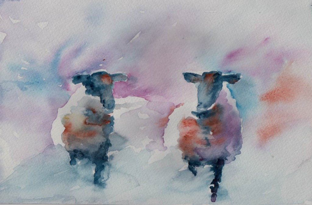 Sheep Sketch (Watercolour)
