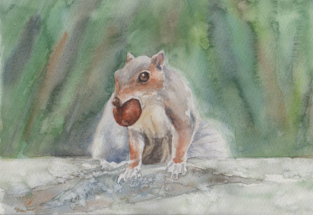 Hands Off My Nuts (Watercolour)