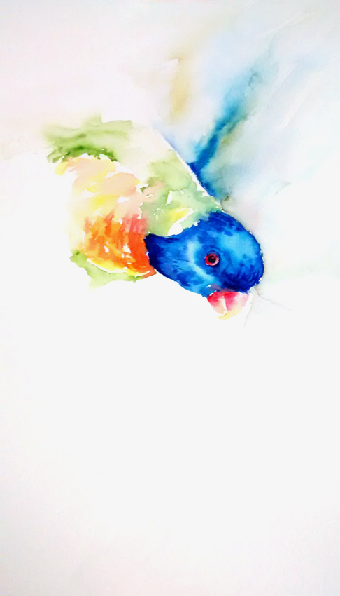 Rainbow Lorikeet a la Jean Haines! (Watercolour)