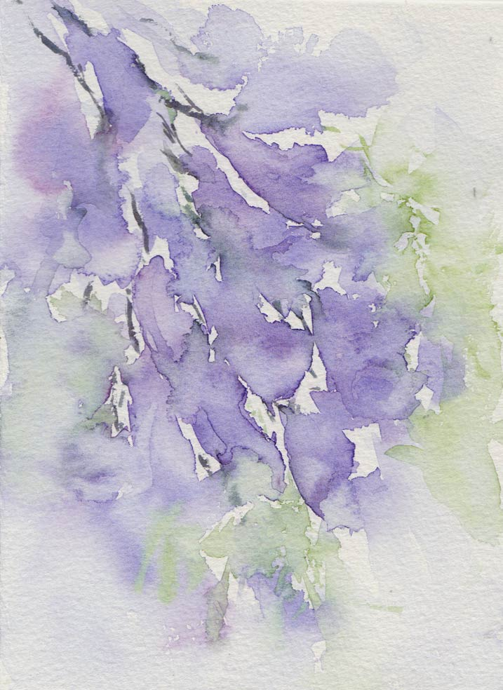 Jacaranda Challenge (Watercolour)