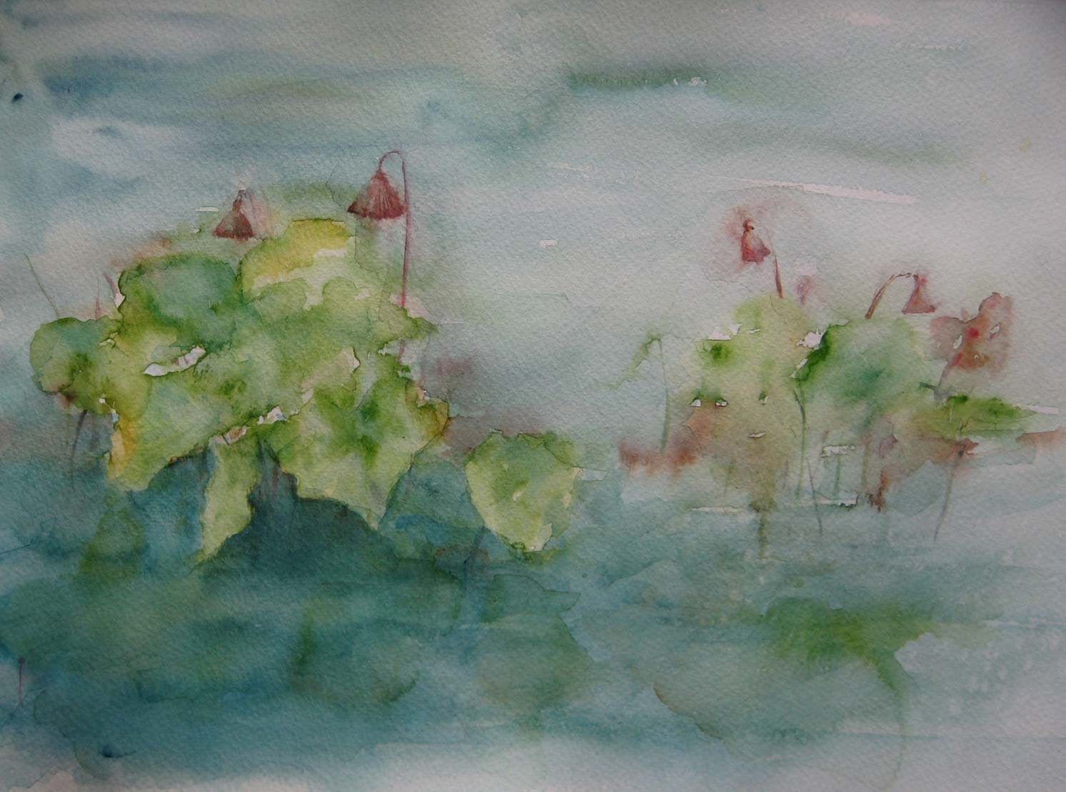 Water Lilies (Watercolour)