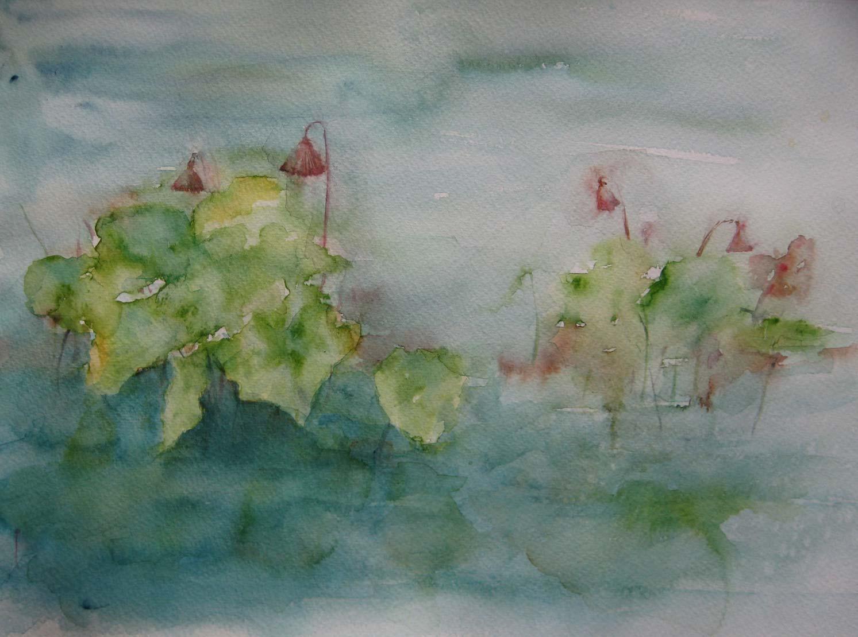 Water Lilies (Watercolour)