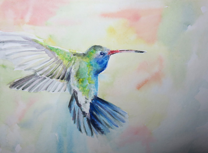 Hummingbird (Inktense pencil & Watercolour)