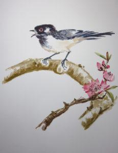 Day 10 Cuckoo