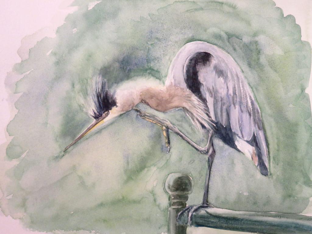 Day 5: Heron
