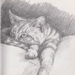 Chilled Cat (Graphite Stick)