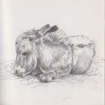 Tired Little Chap (Graphite)