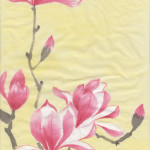 Magnolias (Chinese Spontaneous Style)