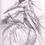 Blue Heron (graphite)