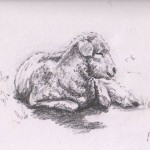 Lazing Lamb (Graphite)