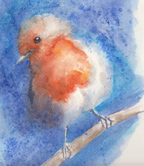 Baby Robin redbreast (Watercolour)