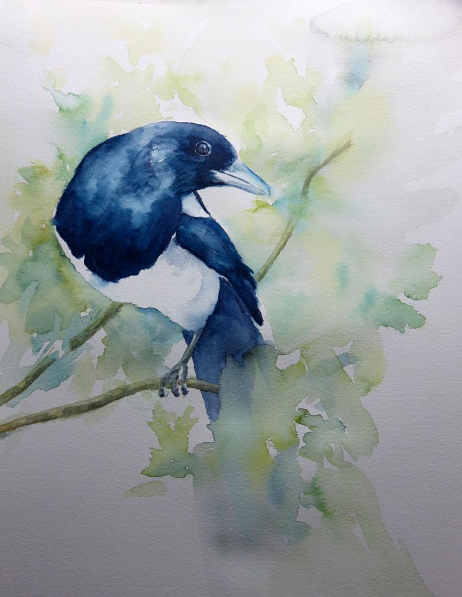 Magpie (Watercolour)